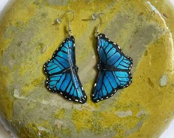 Small Blue Morpho Butterfly Earrings