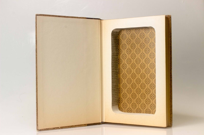 Hollow Book Safe  The Hunchback  Vintage image 0