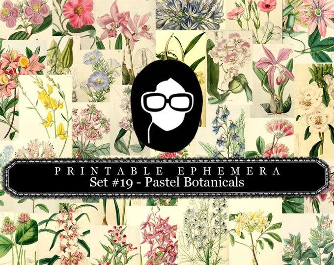 Ephemera Pack - Printable Ephemera Set # 19 - Pastel Botanicals - 30 Page Instant Download, journaling kit, journal cards, journaling card