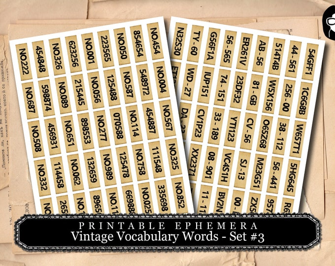 Vintage Vocabulary Cards Set #3 - 2 Page Instant Download - ephemera pack, altered art kit, junk journal kit, blank journal cards