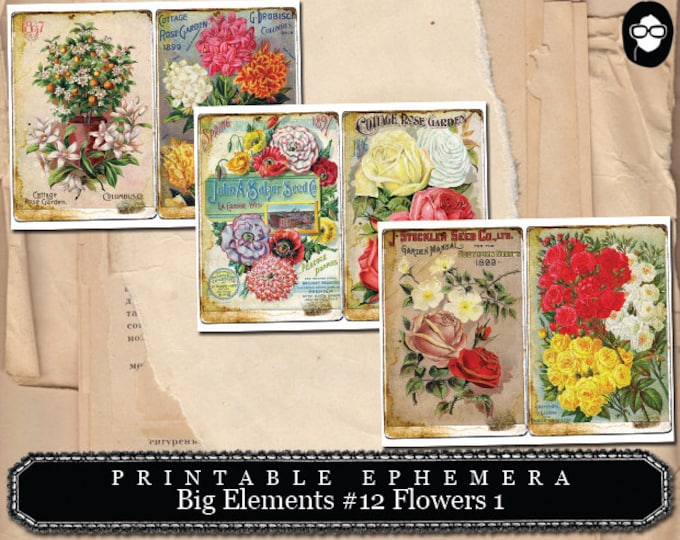Journaling Cards - Big Elements #12 Flowers #1 - 3 Page Instant Download - digital journal card, ephemera pack, gift tags template