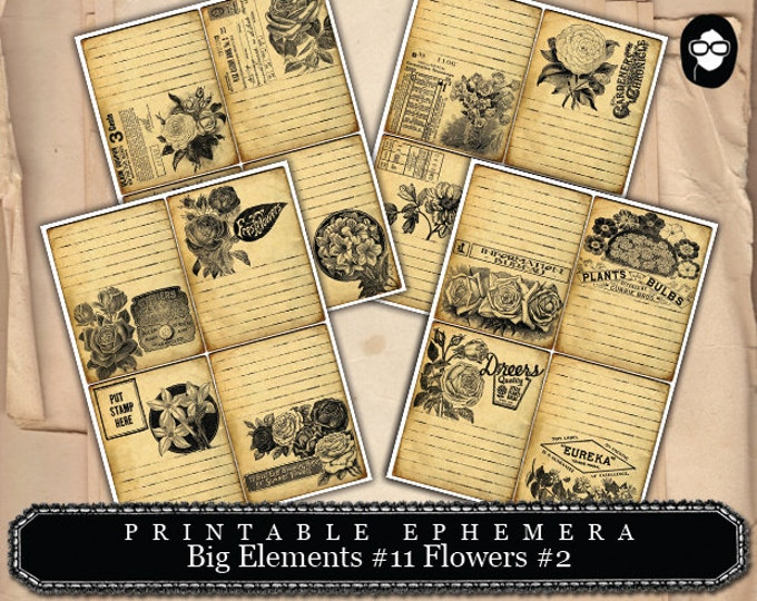 Digital Roses Floral - Big Elements #11 Flowers #2 - 4 Page Instant Download - note card, ephemera pack, ephemera paper pack, clipart floral