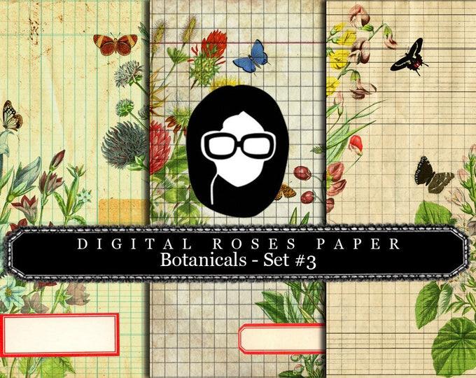 Lined Paper Download - Botanical Set #3 - 8.5x11 Digital Paper Packs- 3 Page Instant Downloads, digital paper pack, botanical prints