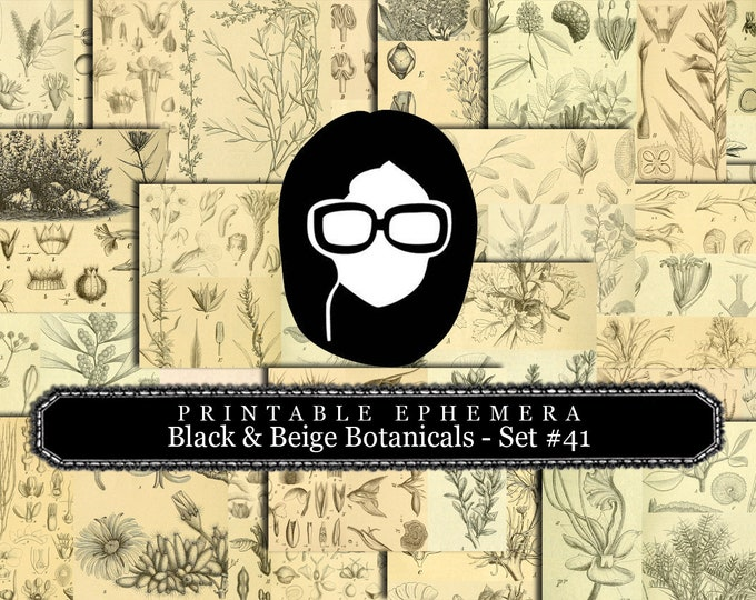 Ephemera Pack - Printable Ephemera Set #41 - Black & Beige Botanicals - 30 Page Instant Download, journaling kit, journal pages