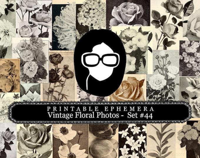 Ephemera Paper Pack - Printable Ephemera Set #44 - Vintage Floral Photos - 15 Pg Instant Download - journal cards, roses clipart floral