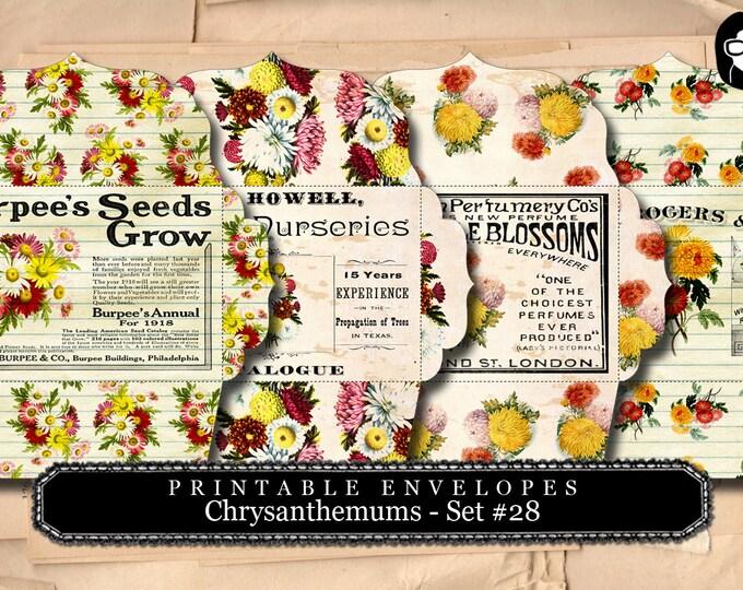Printable Envelopes - Chrysanthemum Set #28 - 4 Page Instant download - envelope templates, envelope template, digital roses floral