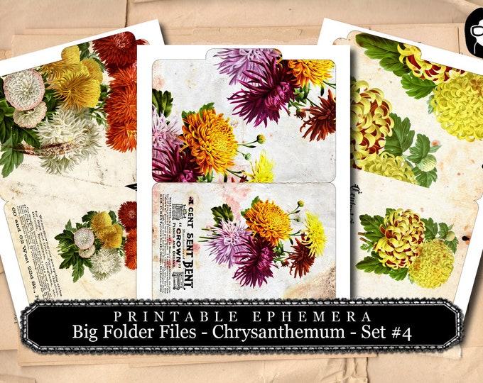 Altered Art Kit - Big Folder Files Chrysanthemum Set #4 - 3 Page Instant Download - floral clipart, journaling cards, journal cards