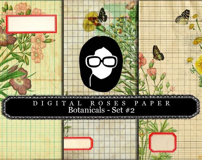Floral Digital Paper - Botanicals #2 - 3 Pg Instant Downloads - digital roses paper, digital paper pack, best digital paper