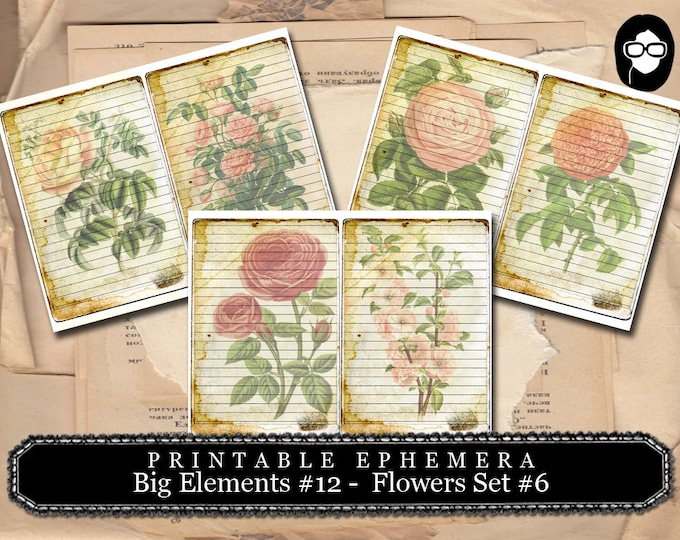 Digital Journal Card - Big Elements #12 Flowers #6 - 3 Page Instant Download - floral clipart, smashbook supplies, blank journal cards
