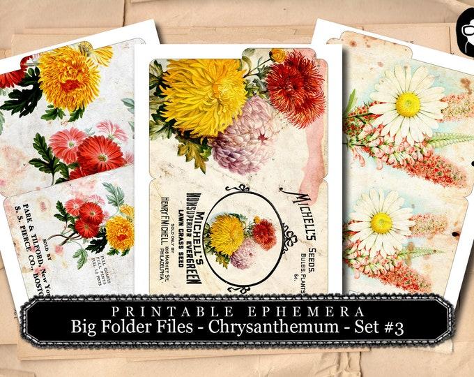 Altered Art Kit - Big Folder Files Chrysanthemum Set #3 - 3 Page Instant Download - floral clipart, journaling cards, journal cards