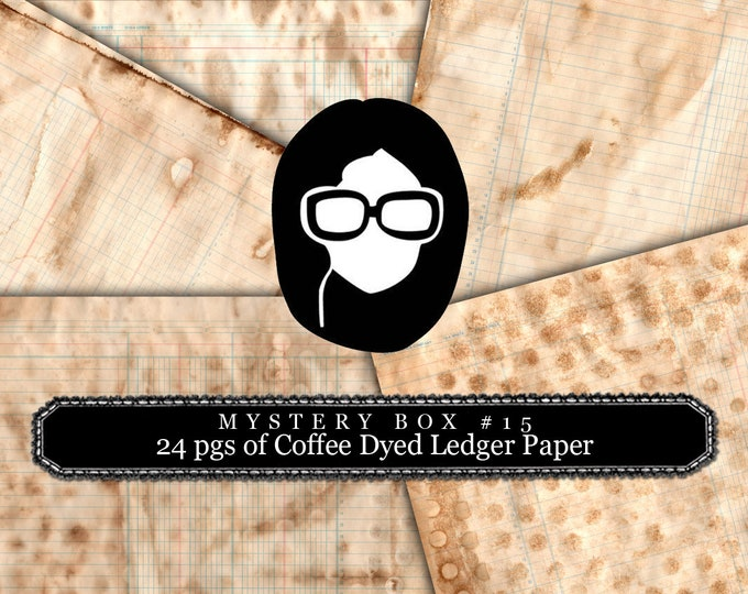Mystery Box #15 -  24 Coffee Dyed Ledger Pages - LIMITED QUANTITIES