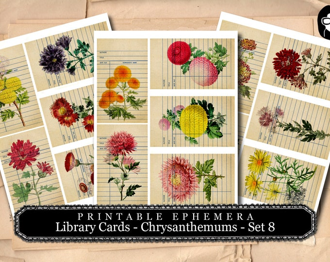 Digital Roses Floral - Library Card Chrysanthemum Set # 8 - 3 Pg Instant Download - mixed media art kit, junk journal supply