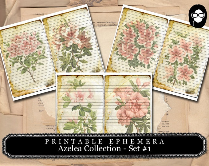 Roses Clipart - Big Elements - # 12  Azalea Set #1 - 3 Page Instant Download - junk journal supply, project life kit, mixed media art kit
