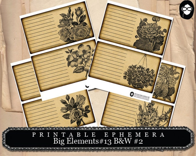 Blank Journal Cards - Big Elements #13 B&W #2 - 4 Page Instant Download - digital journal kits, roses clipart floral, journaling cards