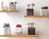 Set of 6 White and Black,Monochrome,Geometric pattern Ceramic Planter,Succulent Planter, Pot,Cactus Planter Container,Indoor Planter