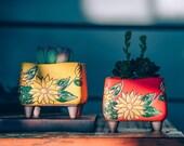 Set of 2 - Beautiful Flower Style terracotta Planter,Ceramic Planter,Succulent Planter, Succulent Pot,Cactus Planter Container, Planter Set