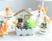Lovely Animals Planter,Dog Planter,Succulent Pot,Cactus Planter Container,Planter Set,Gift Pots,Air Plant Holder,Desk Decoration