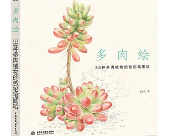38 Succulent drawing- colored pencil tutorial, hand painted succulent tutorial, succulent illustration