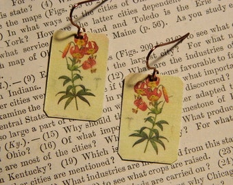 Redoute' earrings Botanical illustration art mixed media jewelry