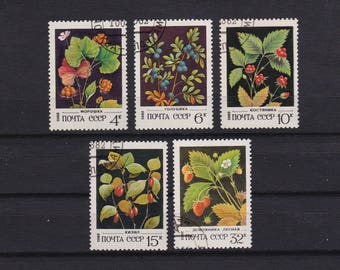 Vintage stamps, Wild berries of Soviet Union, Russian postage stamps uncancelled 1982, paper ephemera, collage art supplies