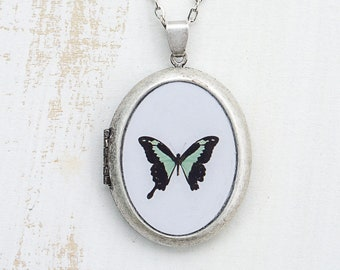 Butterfly Photo Locket | Green Butterfly Jewelry | Photography | Brass Oval Locket | Necklace | Pendant