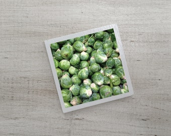 Brussels Sprouts Art Magnet | Typography | Neodymium | Vintage Charm | Kitchen Fridge Magnet | Green