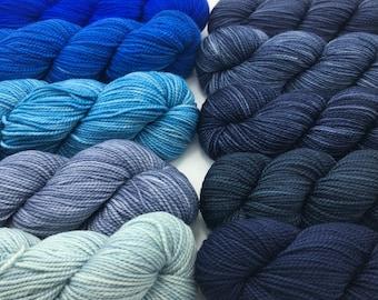 Koigu KPM paint pack, 10 pack, Cobalt, fingering weight yarn