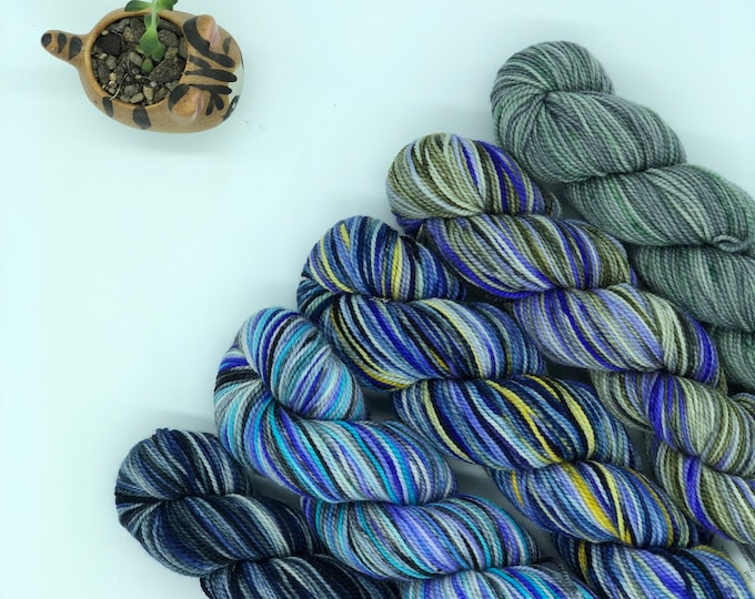 Koigu KPPPM paint pack, 5 pack, fingering weight yarn