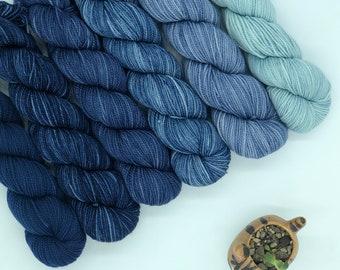 Koigu KPM paint pack, 6 pack, Blue fade, fingering weight yarn