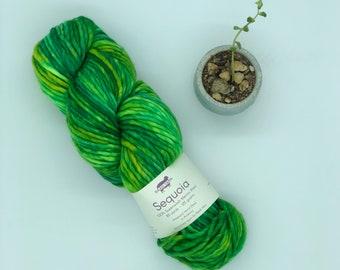 Baah Yarn Sequoia,  Super Bulky, 100%  Merino Wool, Mountain Meadow