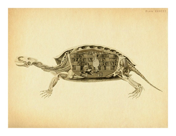 Surreal Turtle Anatomy Shell Art Print Turtle Bones Library Etsy