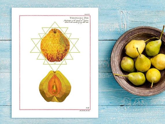 Orange Fruit Vagina Art Print Modern Botany Anatomy Fruit Etsy