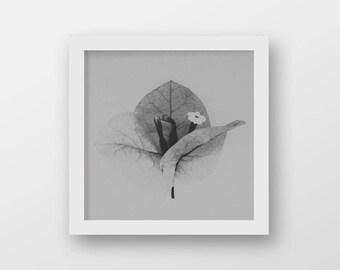 Cottage Wall Art | Grey Flower Print | Modern Rustic Printable Art | Country Cottage Decor | Minimalist Botanical Art Print | Square Print
