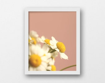 Pink Botanical Printable Art | Blush Pink English Cottage Decor | Minimalist Flower Photography | Modern Country Wall Art | Digital Download