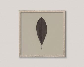 Modern Rustic Wall Art | Plant Photography Print | Country Cottage Home Decor | Digital Olive Green Art Print | Minimalist Botanical Print