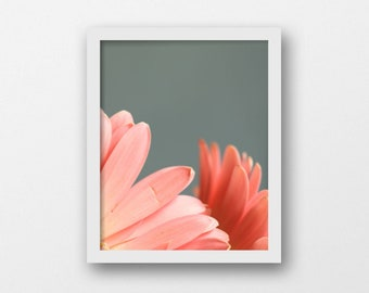 Printable Flower Art | Pink and Teal | Minimalist Flower Photography | Botanical Digital Download | English Cottage Decor | Modern Country
