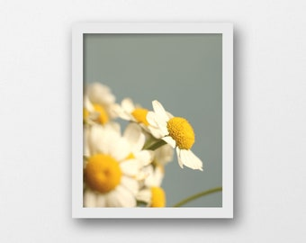Minimalist Flower Printable | Seafoam Green Wall Art | Large Botanical Photography Print | Country Cottage Home Decor | White Daisies Art