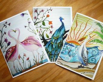Bird card set, 3 greeting cards with envelopes, blank inside, bird art, flamingos, peacock, pelican