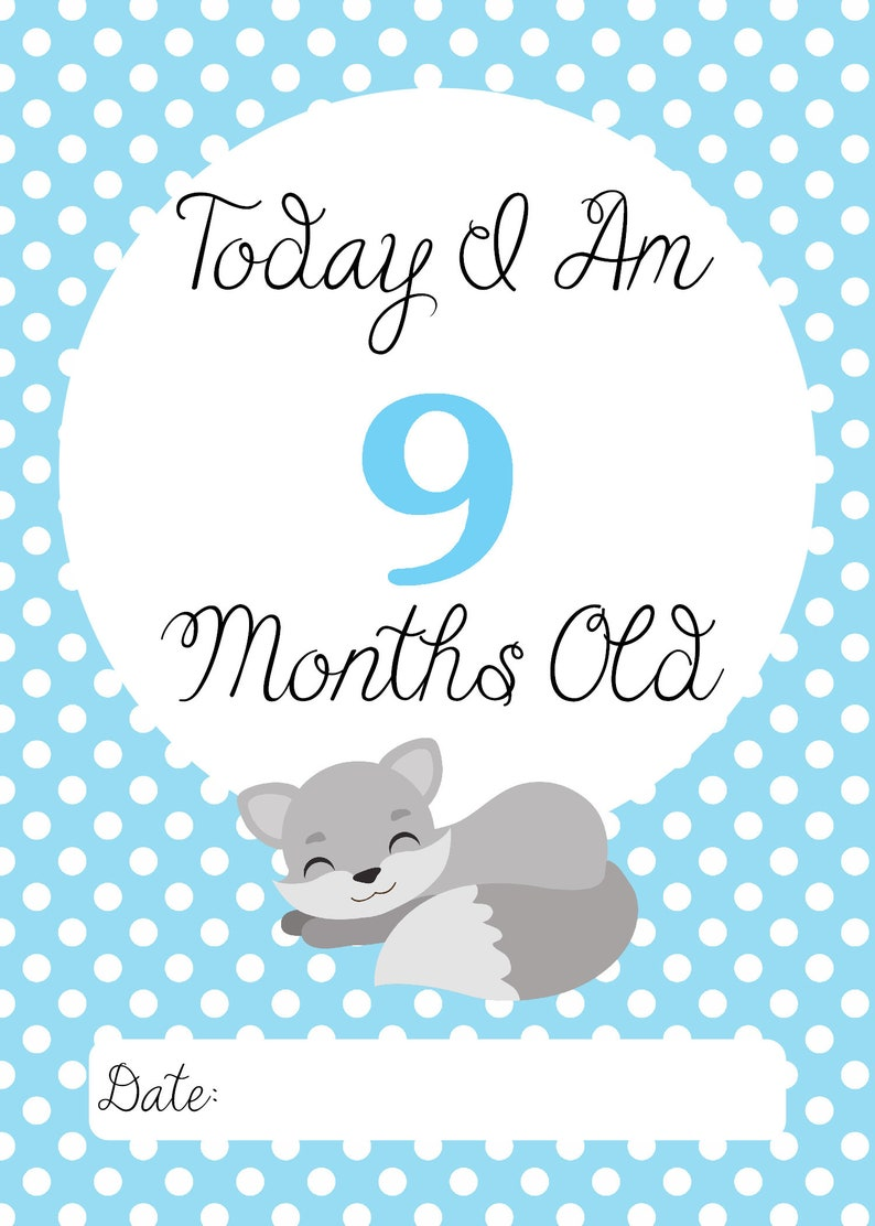 Baby Milestone Cards Baby Fox Blue and Gray Set of 32