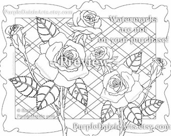 Printable Color Page Adult Roses Colour To Digital Art Sheet Rose Buds Bud Cluster Flowers Line Drawing JPEG File Instant Download