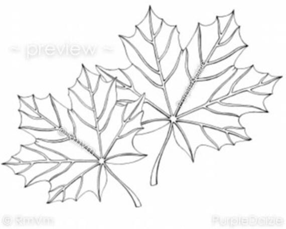 Printable Color Page Digital Coloring Sheet Zen Doodle Maple Etsy