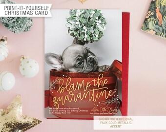Printable Photo Pet Funny Quarantine Christmas Card - Blame the Quarantine
