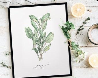 Harvest Sage Print