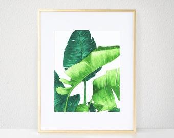 Lush Palms II