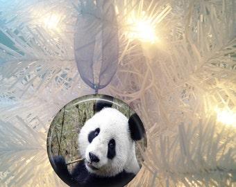 Panda Bear #3 Christmas Tree Ornament