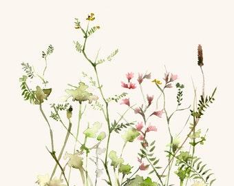 Watercolor Art Print Wild Flower Meadow