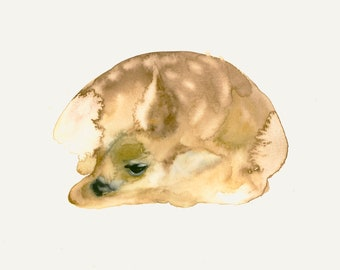 Sleepy Fawn Fine Art Print from my Original Watercolor Painting
