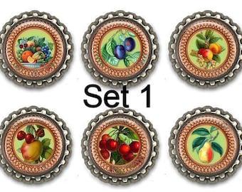 Fruit  Fridge Magnets Kitchen Office Set of Six Hostess Housewarming Party Favor