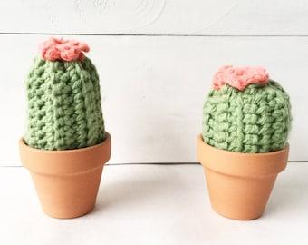 Crochet/Knit Cactus Pincushion