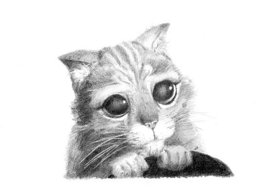 Puss In Boots Pencil Drawing Etsy